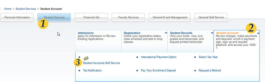 Screenshot of Student Accounts page