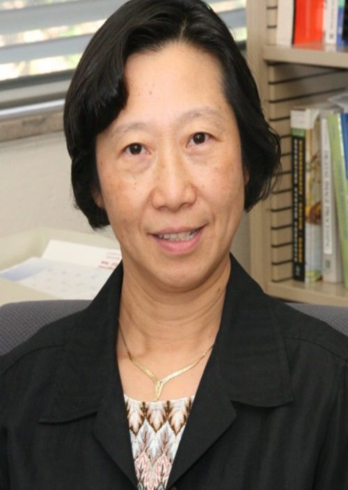Yi Lu Murphey, Associate Dean for Graduate Education and Research