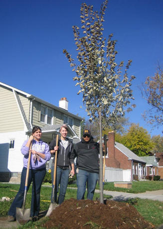 UM-Dearborn students planting a tree