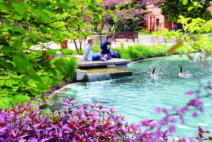 Students sitting by the Chancellor's Pond