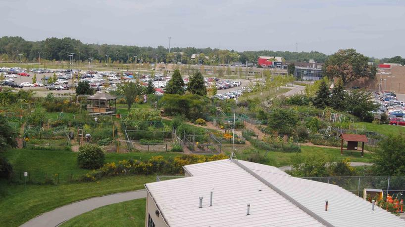 View of Community Organic Garden from parking structure