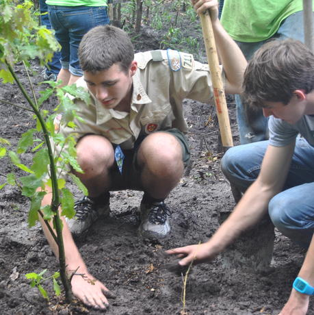 Boy Scout Eagle Service Project Tree Planting