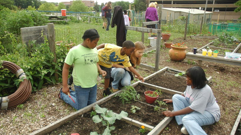 Young Gardeners in Children's Garden section of Community Organic Garden