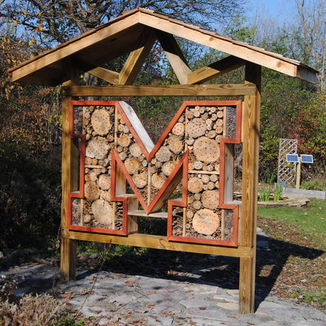 Go Blue! Insect Hotel in Pollinator Garden