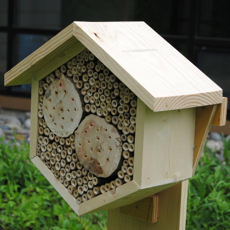 Hexagonal insect hotel design