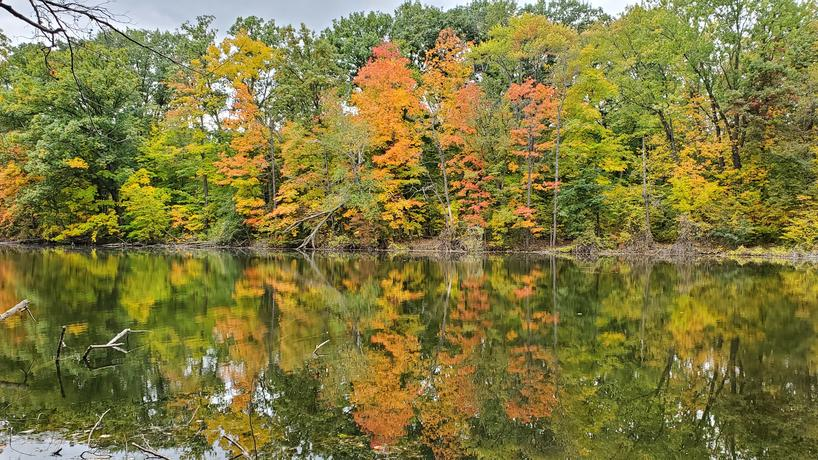 Fairlane Lake in Autumn