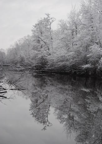 Fairlane Lake in winter