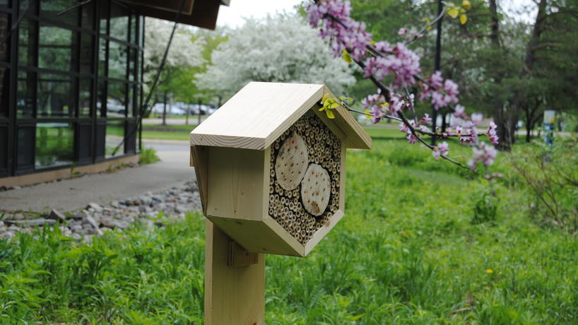 Hexagon-shaped insect hotel situated in the EIC rain garden