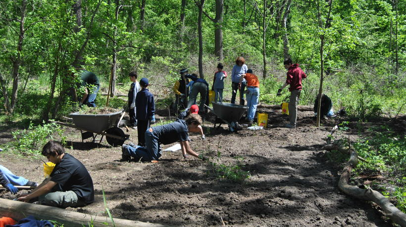 Volunteers plant native species in Environmental Study Area