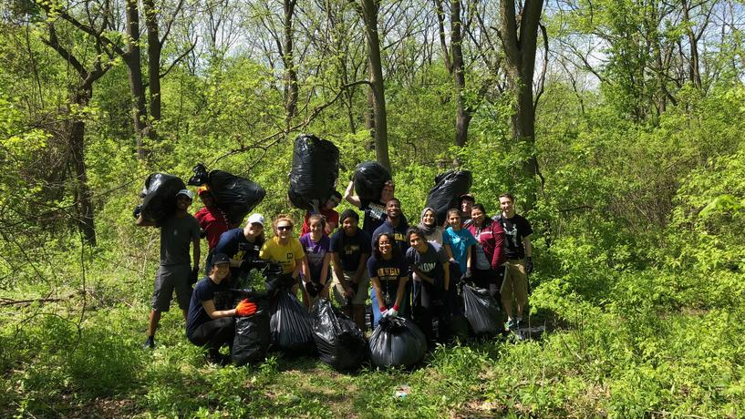 Volunteers pull garlic mustard from the Environmental Study Area