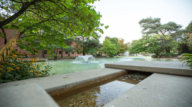 Chancellor's Pond in the summer