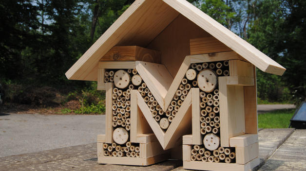 A Block M-shaped 'bee hotel' made of short sections of hollow bamboo.