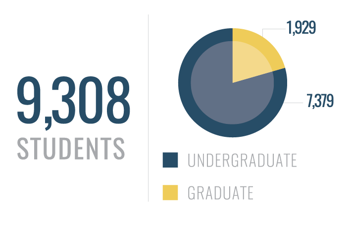 Graph depicting breakdown of students from undergraduate to graduate.
